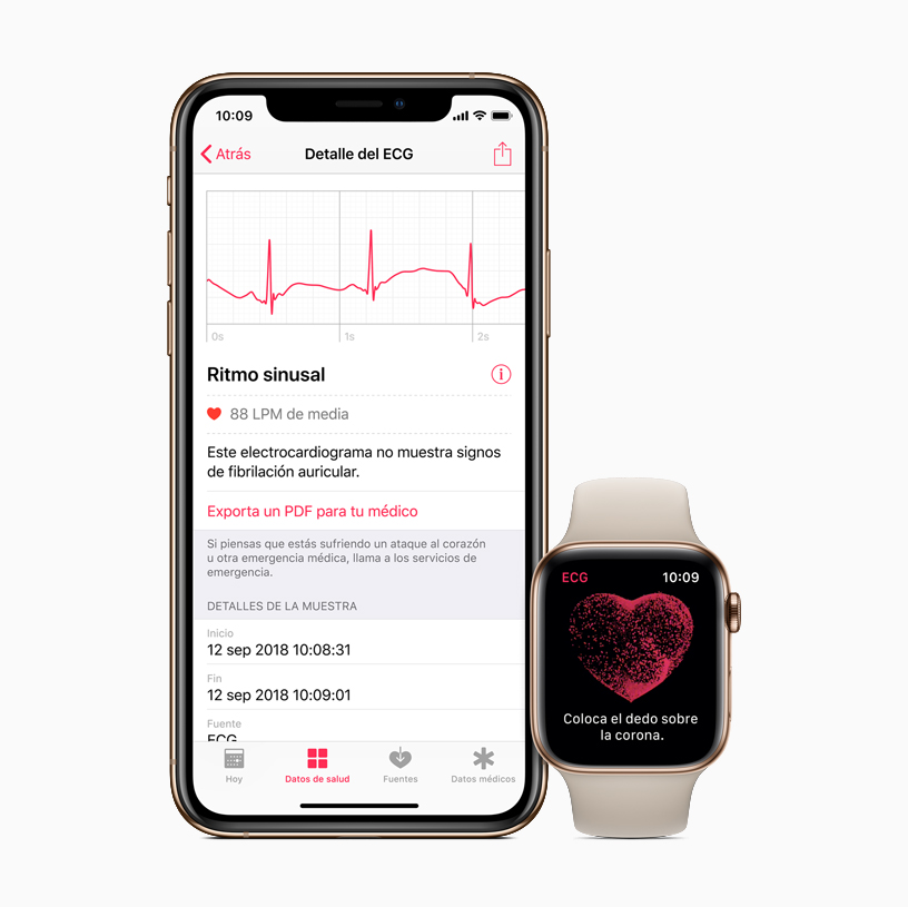La App Ecg Y Las Notificaciones De Ritmo Cardiaco Irregular Llegan Hoy Al Apple Watch Apple Es
