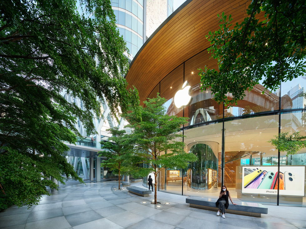 Terminalia trees in the outdoor plaza at Apple Central World.