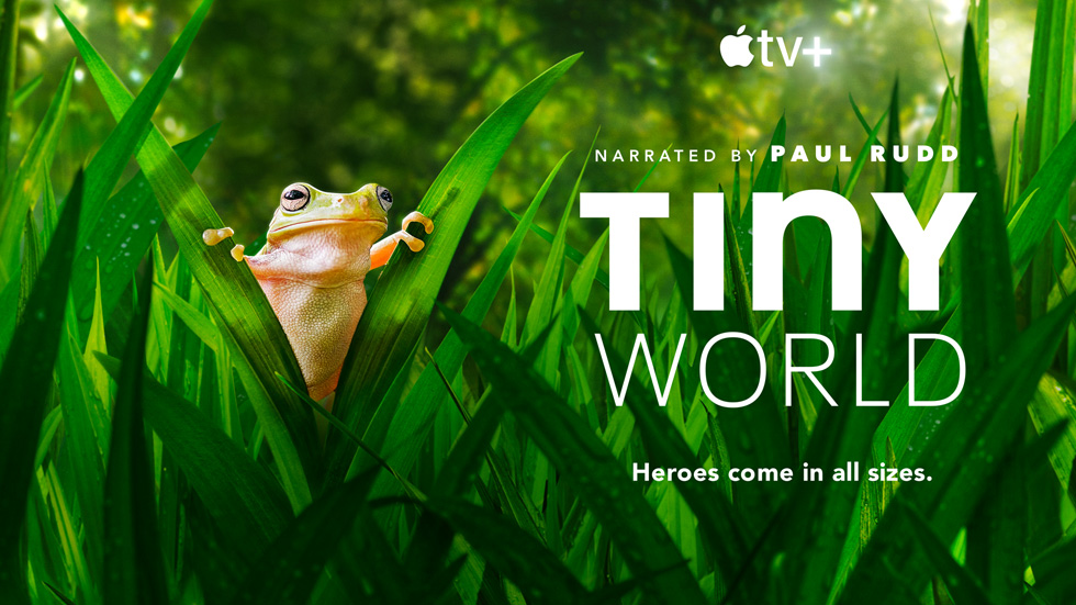 Série documentaire « Tiny World »