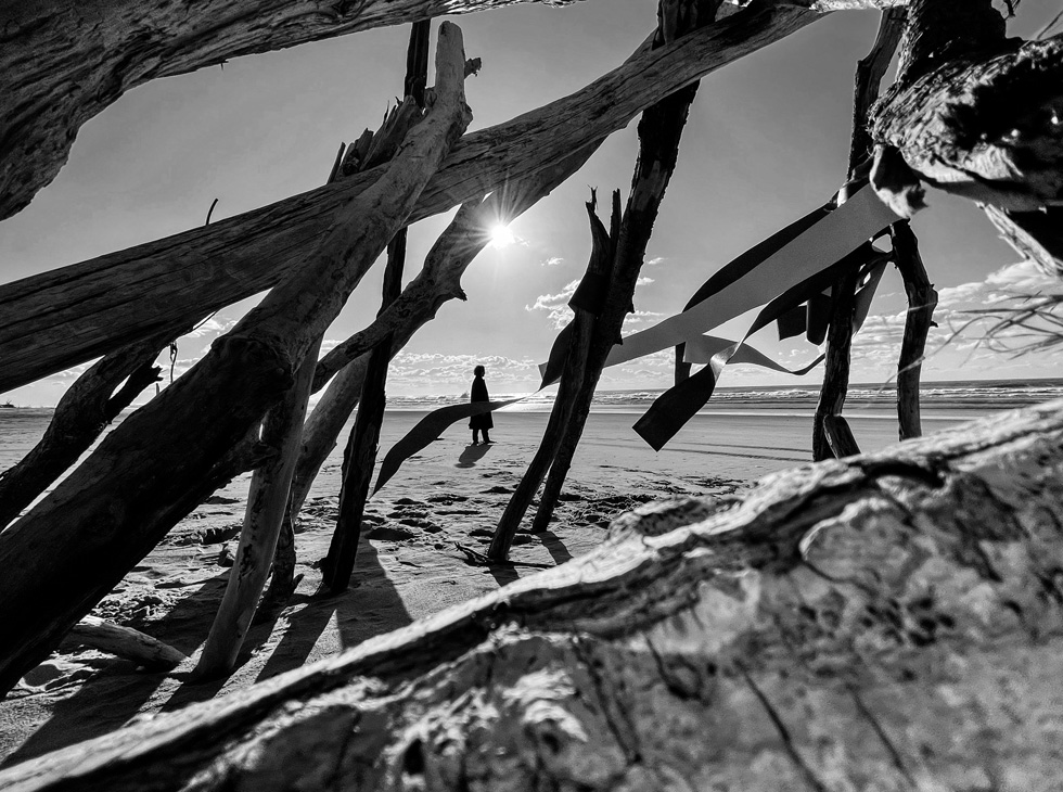 A black-and-white shot of a figure, visible through a lattice of driftwood, standing on a beach.