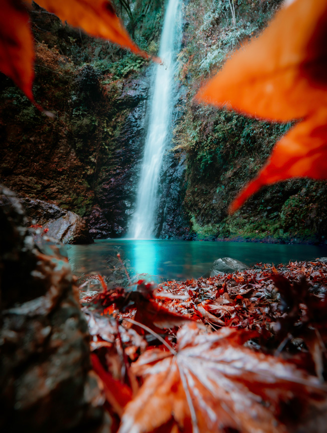 Red leaves in the foreground frame a distant waterfall.