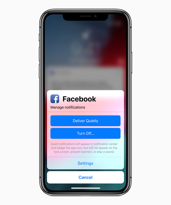 Écran de l'iPhone X affichant les options de gestion des notifications de Facebook.