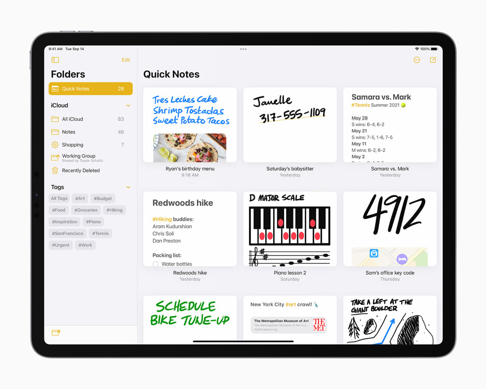 Organised Quick Notes in the Notes app on iPad Pro.