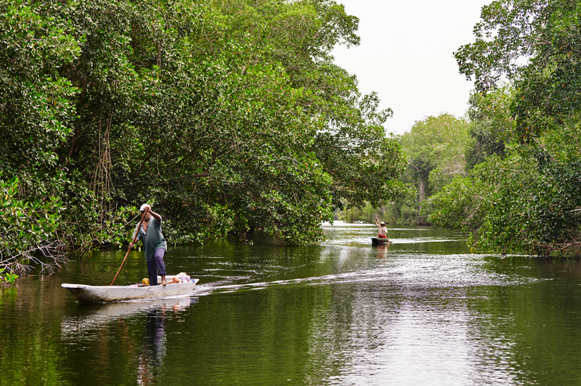 Local fishermen in Cispatá Bay navigate the channels that lead into and out of the mangroves.