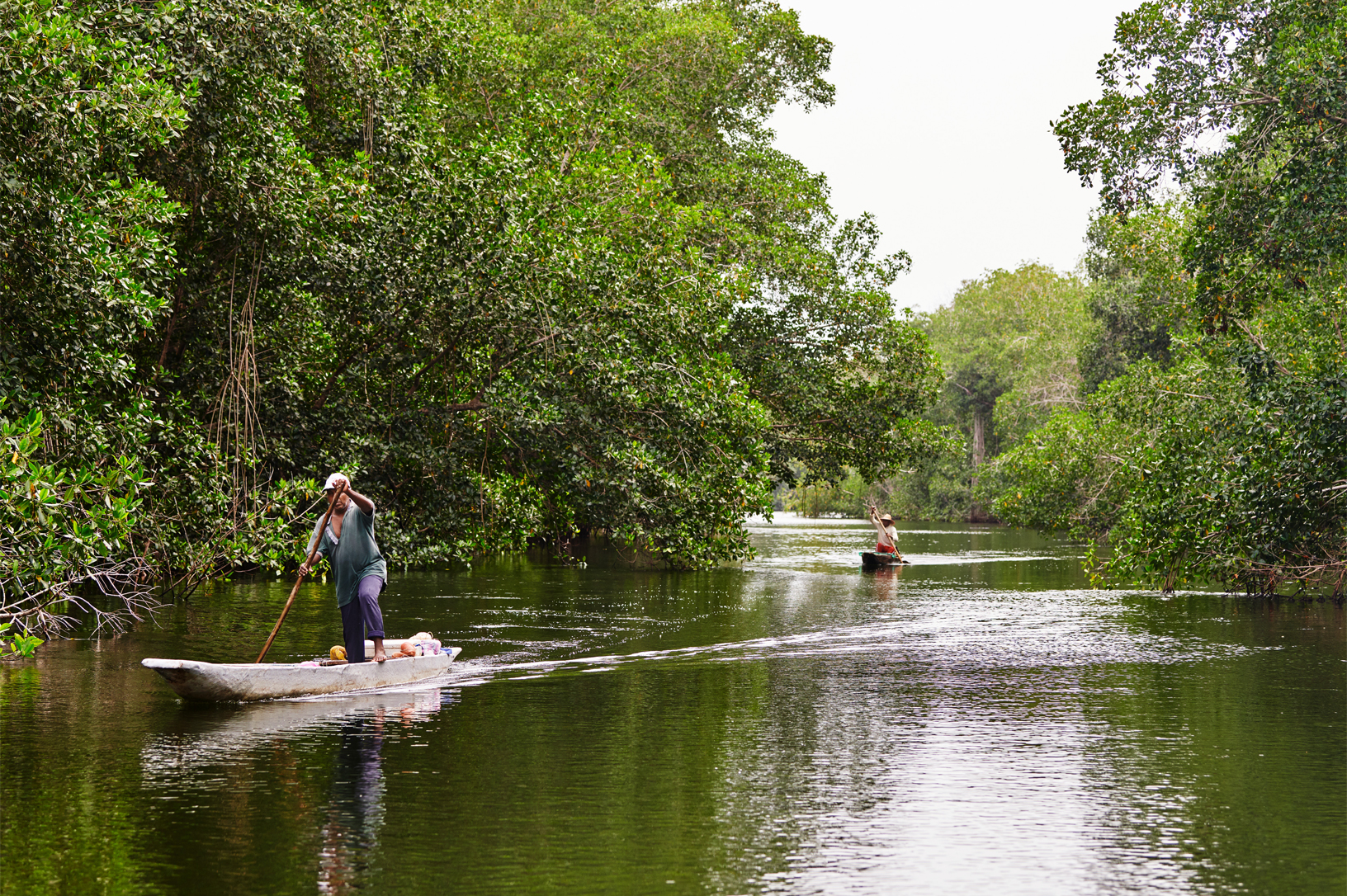 https://www.apple.com/newsroom/images/values/environment/Apple_Mangroves_Man-Canoe-River_04222019_big.jpg.large_2x.jpg