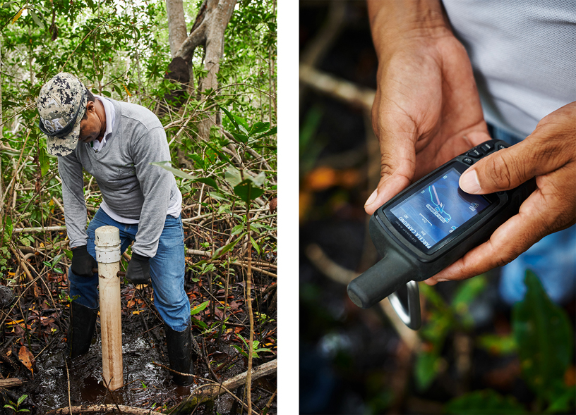 CVS field assistant José Gregorio Padilla Bautista takes a soil sample.