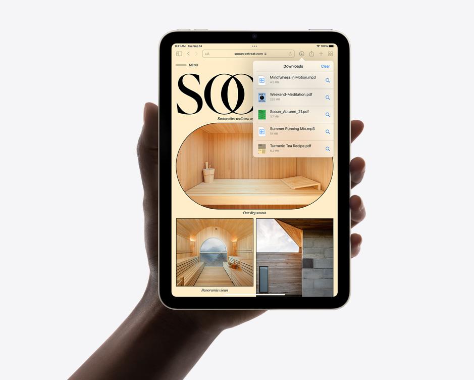 Safari on iPad mini