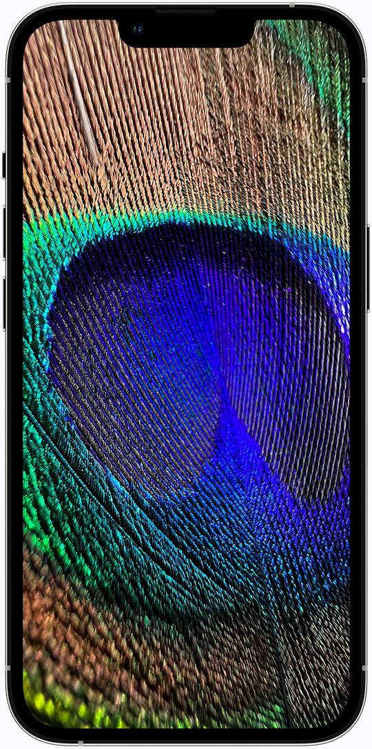https://www.apple.com/v/iphone-13-pro/a/images/overview/design/ceramic_shield_1_static__c4a3oecyob0i_large_2x.jpg